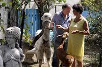 alpaga-parc-animalier-toulouse